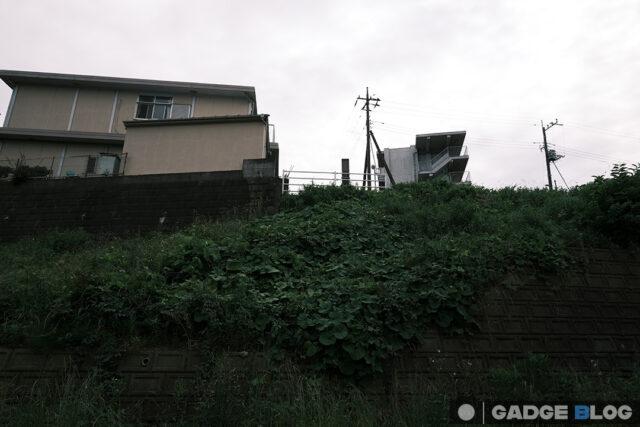 建物とグリーン