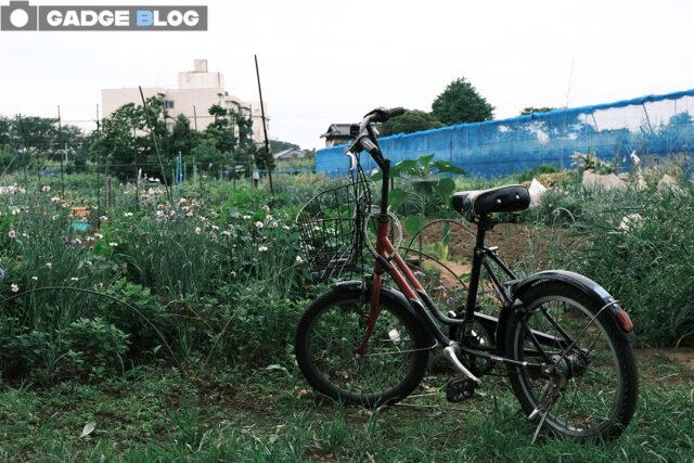畑の中の自転車